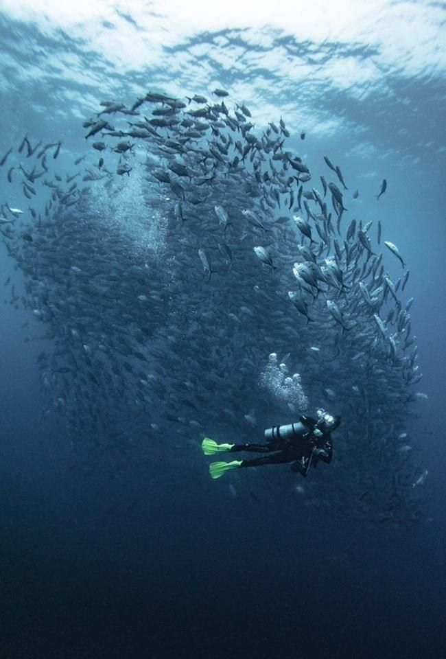 Бали 2020_Страница_02_Изображение_0002